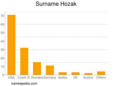 Surname Hozak