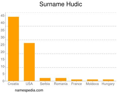 Surname Hudic