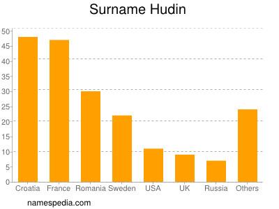 Surname Hudin