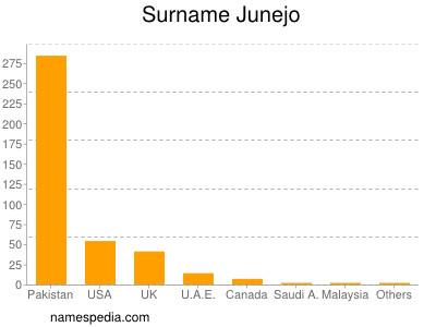 Surname Junejo