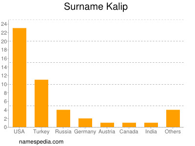 Surname Kalip