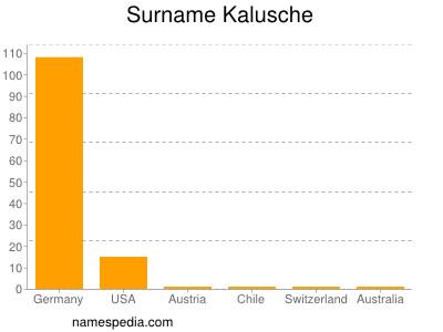 Surname Kalusche