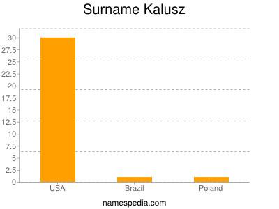 Surname Kalusz