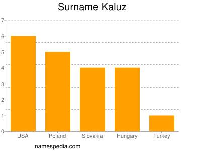 Surname Kaluz