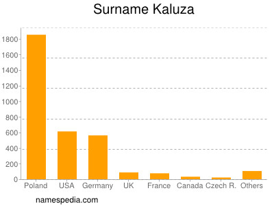Surname Kaluza