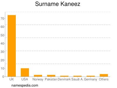 Surname Kaneez