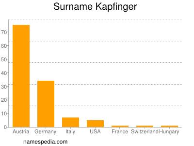 Surname Kapfinger