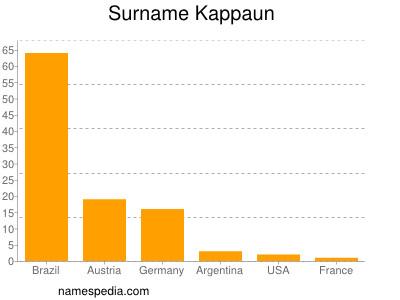 Surname Kappaun