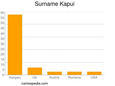 Surname Kapui