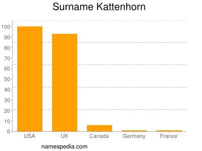 Surname Kattenhorn