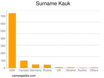 Surname Kauk