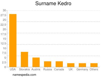 Surname Kedro