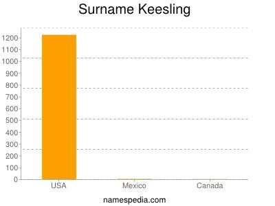 Surname Keesling