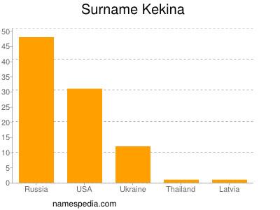 Surname Kekina