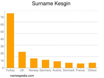 Surname Kesgin