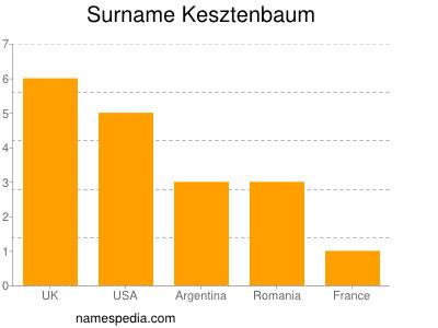 Surname Kesztenbaum