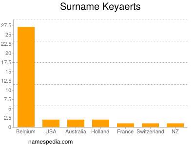 Surname Keyaerts