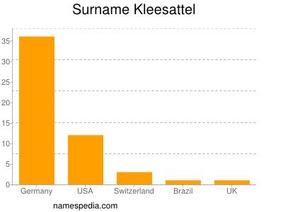 Surname Kleesattel