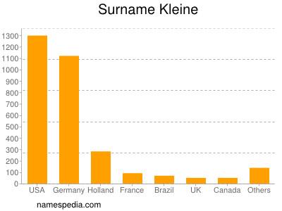 Surname Kleine