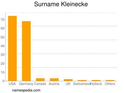 Surname Kleinecke