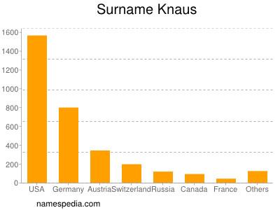 Surname Knaus