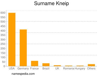 Surname Kneip