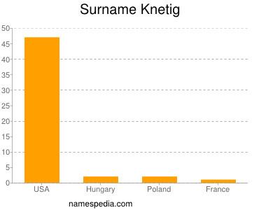 Surname Knetig