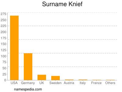 Surname Knief