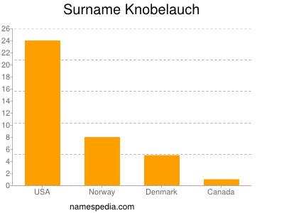 Surname Knobelauch