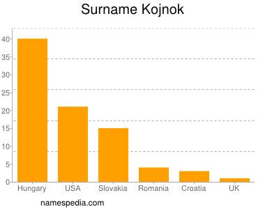 Surname Kojnok