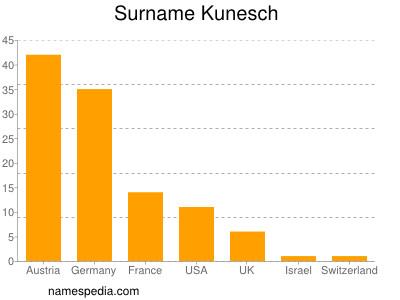 Surname Kunesch