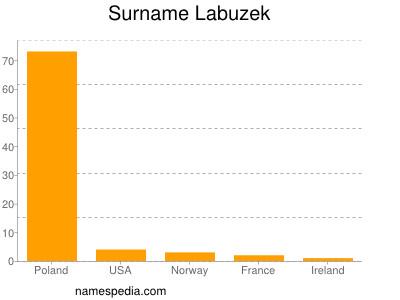 Surname Labuzek