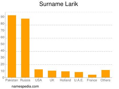 Surname Larik
