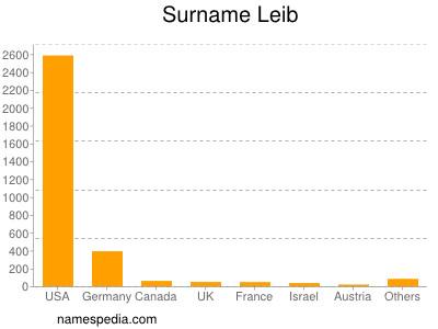 Surname Leib