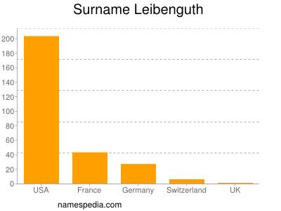 Surname Leibenguth