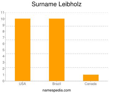 Surname Leibholz