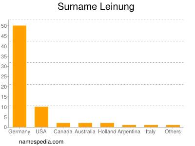 Surname Leinung