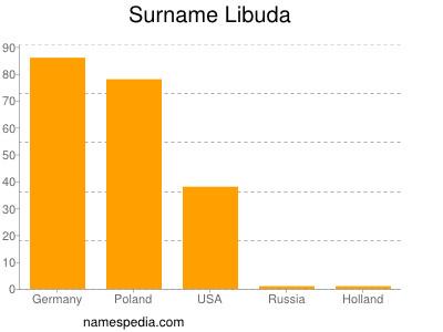 Surname Libuda