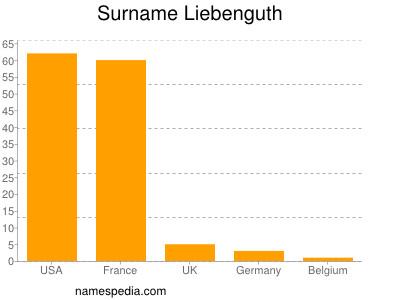 Surname Liebenguth
