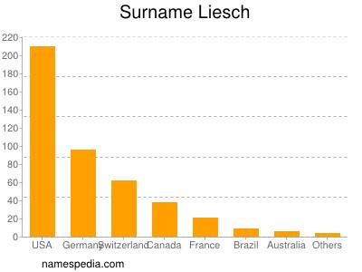 Surname Liesch