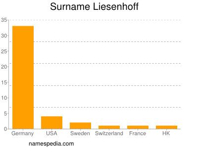 Surname Liesenhoff