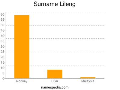Surname Lileng