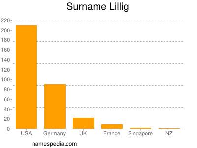 Surname Lillig