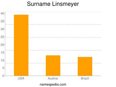 Surname Linsmeyer