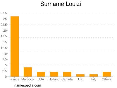 Surname Louizi