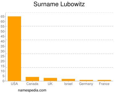 Surname Lubowitz