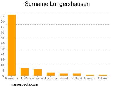 Surname Lungershausen