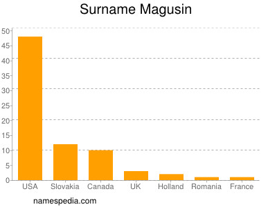 Surname Magusin