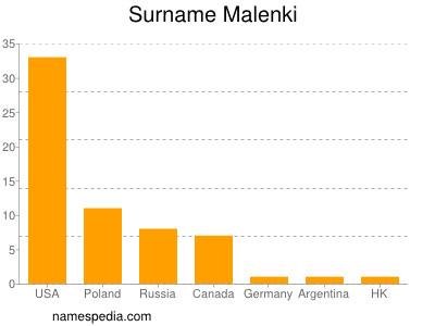 Surname Malenki