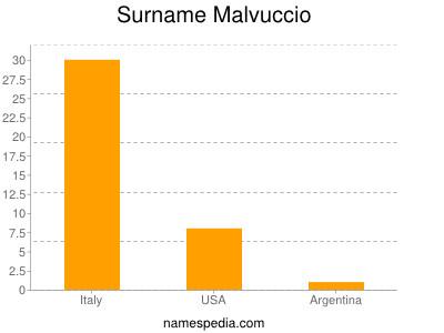 Surname Malvuccio